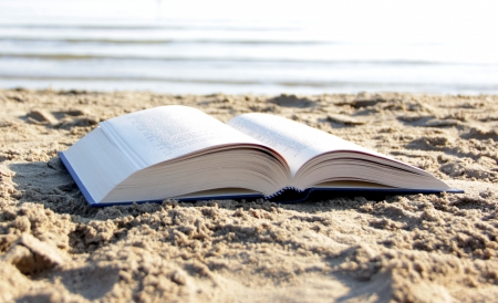 16983233 - book on the beach