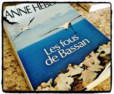A.Hebert_fou_Bassan