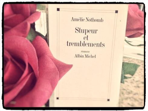 Stupeur_tremblements-Moi